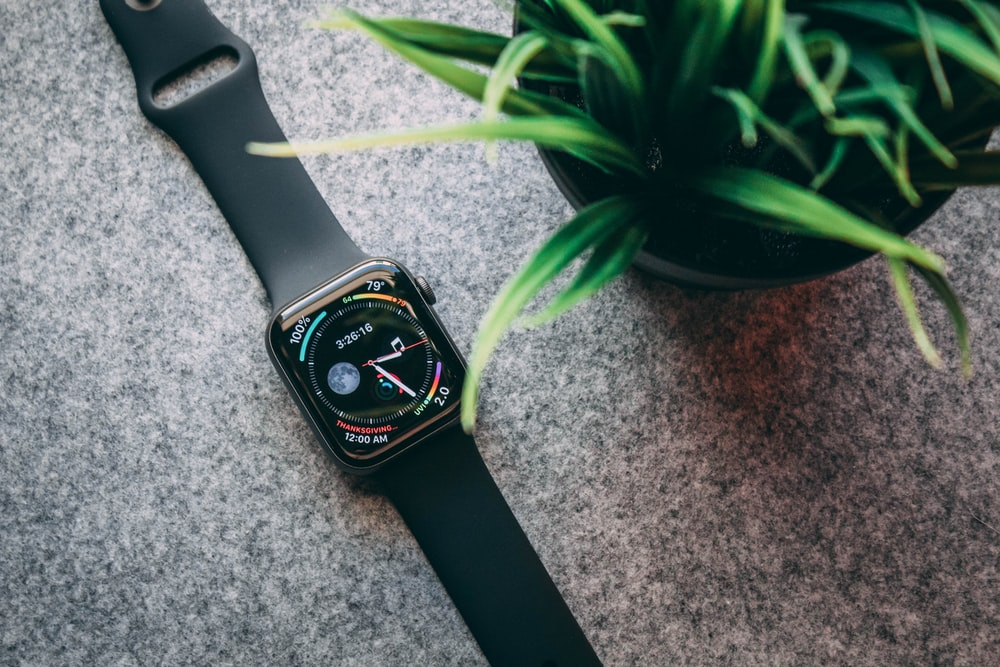 space black stainless steel Apple Watch with Sport Band beside linear-leafed plant