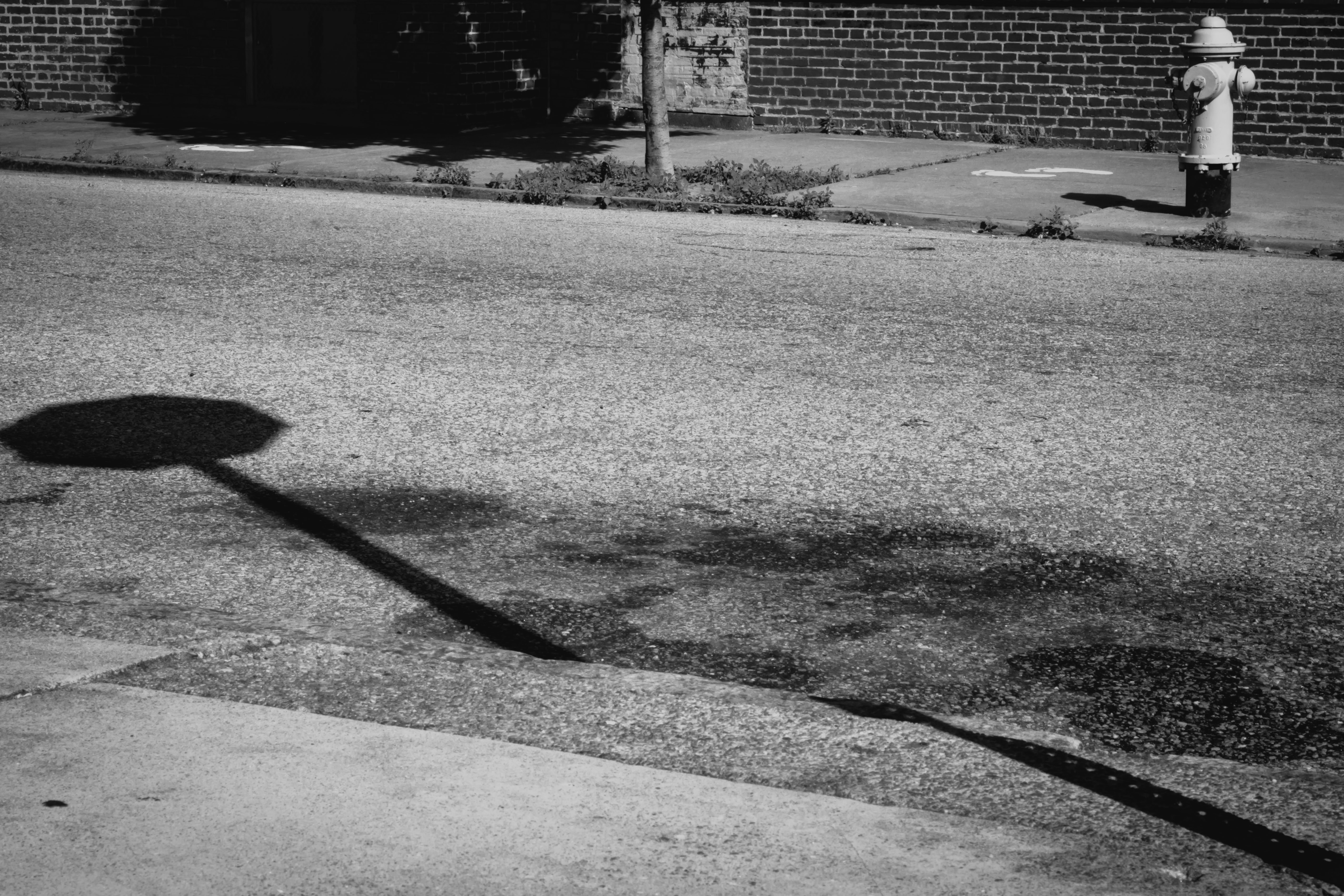 grayscale photography of water hydrant