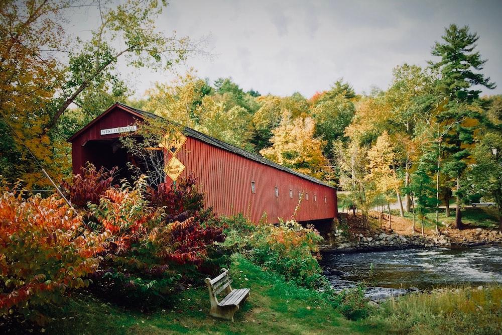 brown shack beside river