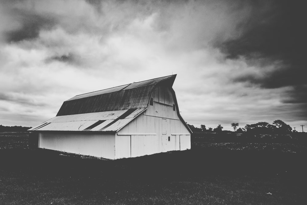 house in open field grayscale photography