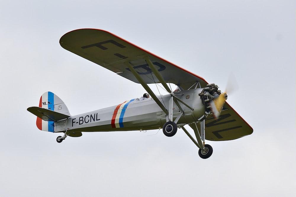 gray monoplane