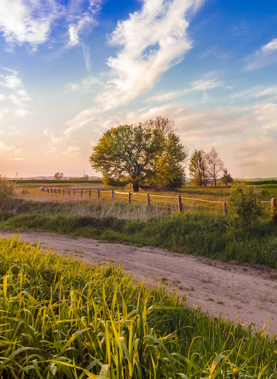 Rural Health Disparities: The Challenges and Potential Solutions Explained