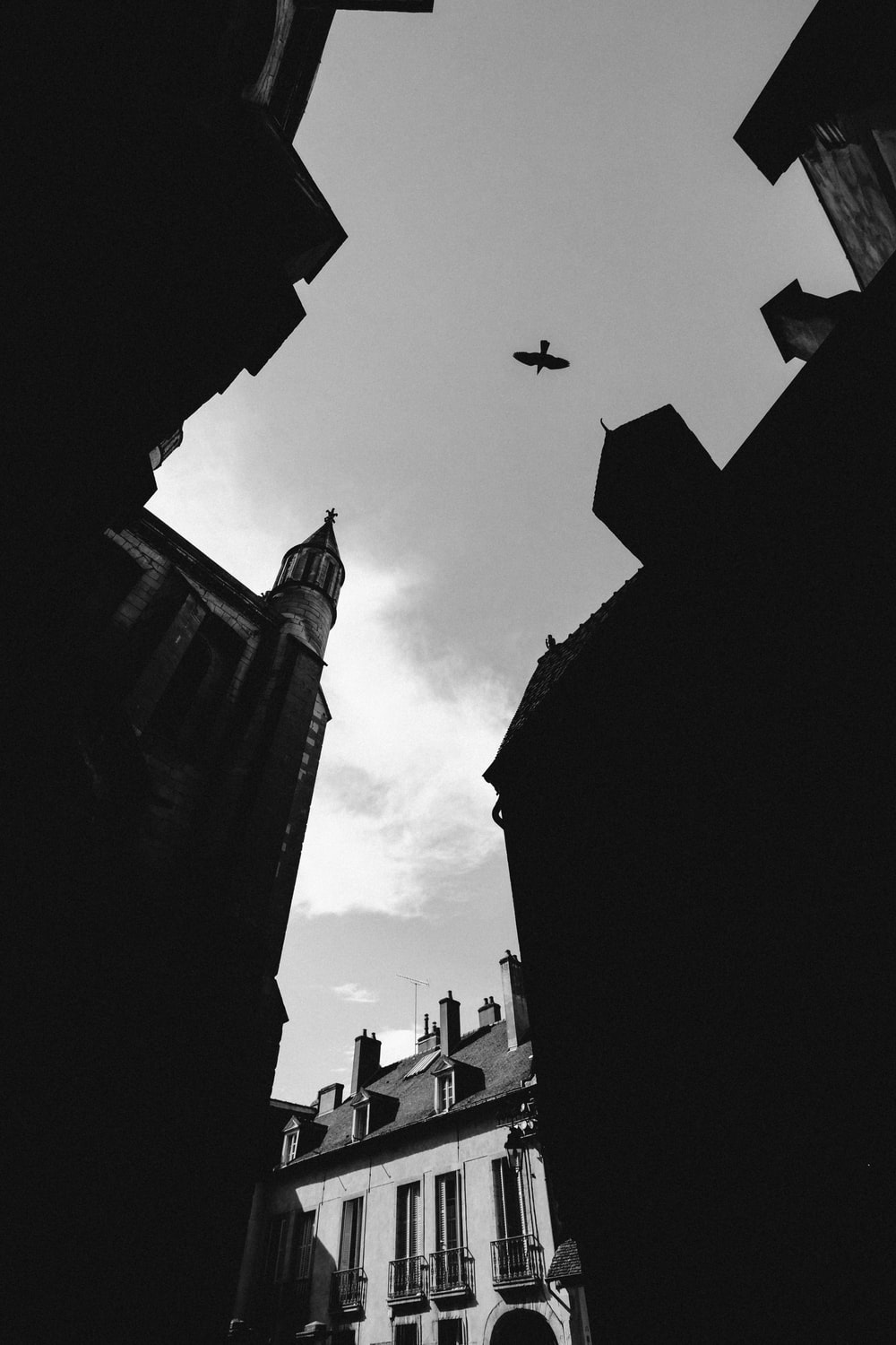 grayscale photography of birds flying on skies