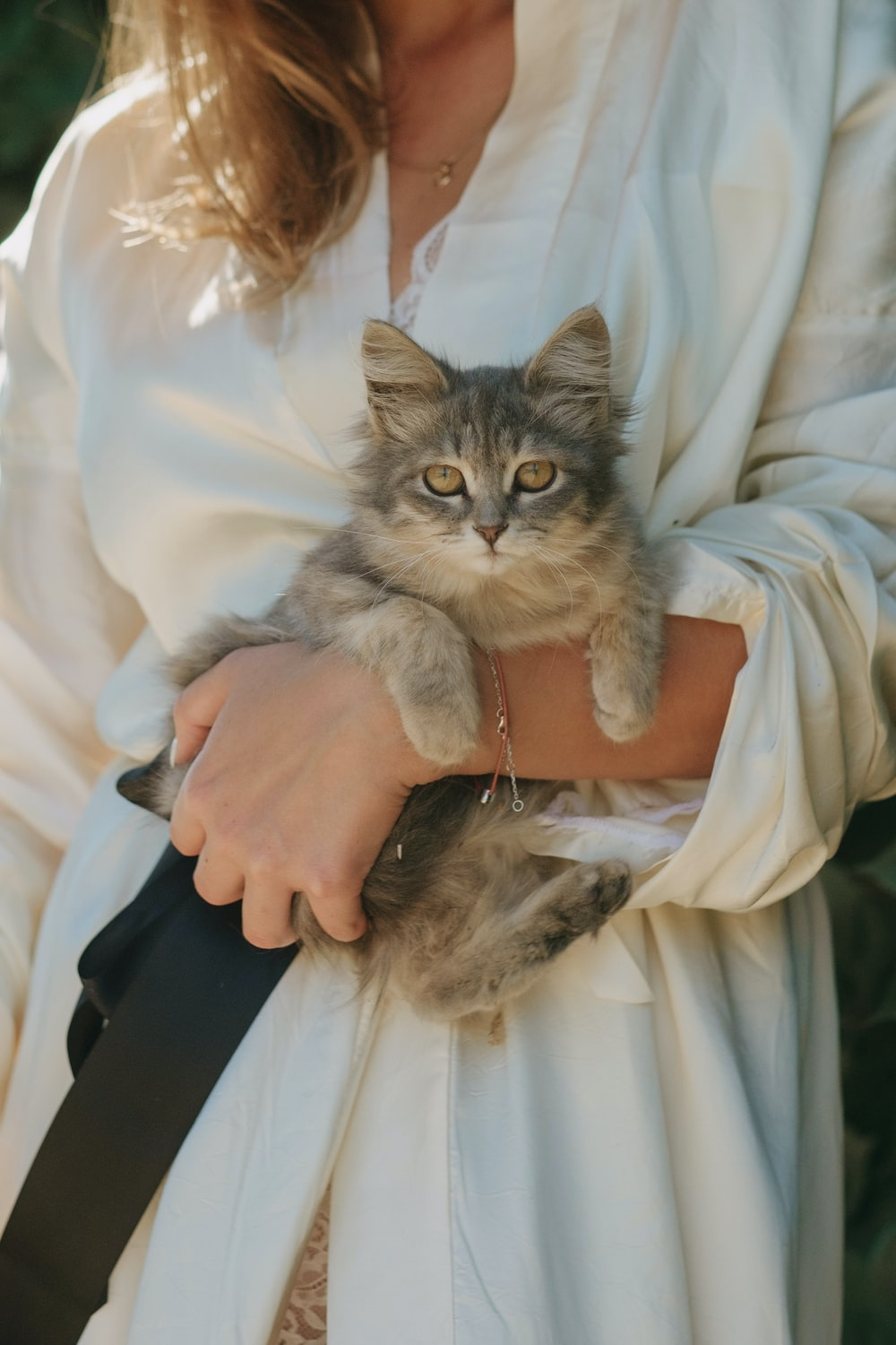woman holding brown tabby cat