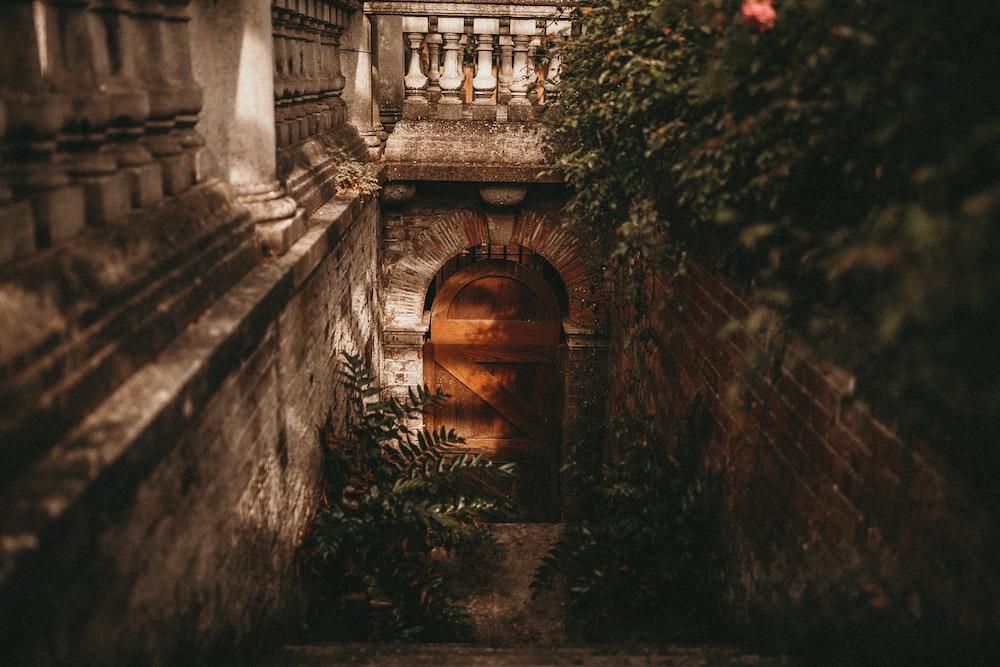 closed brown wooden door under stairs