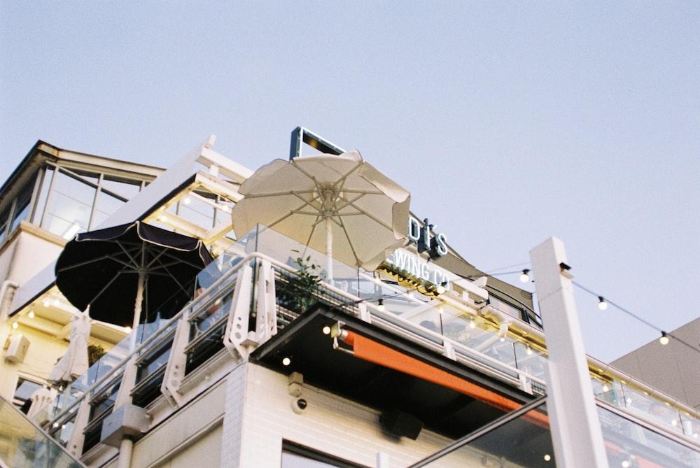 low-angle photography of umbrella
