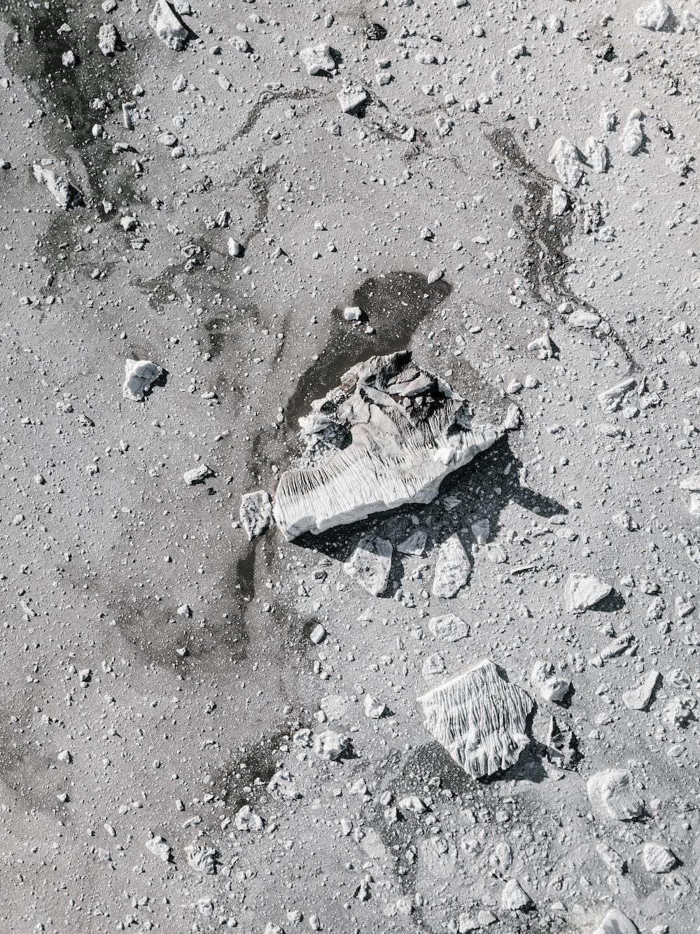 gray stones on gray dirt