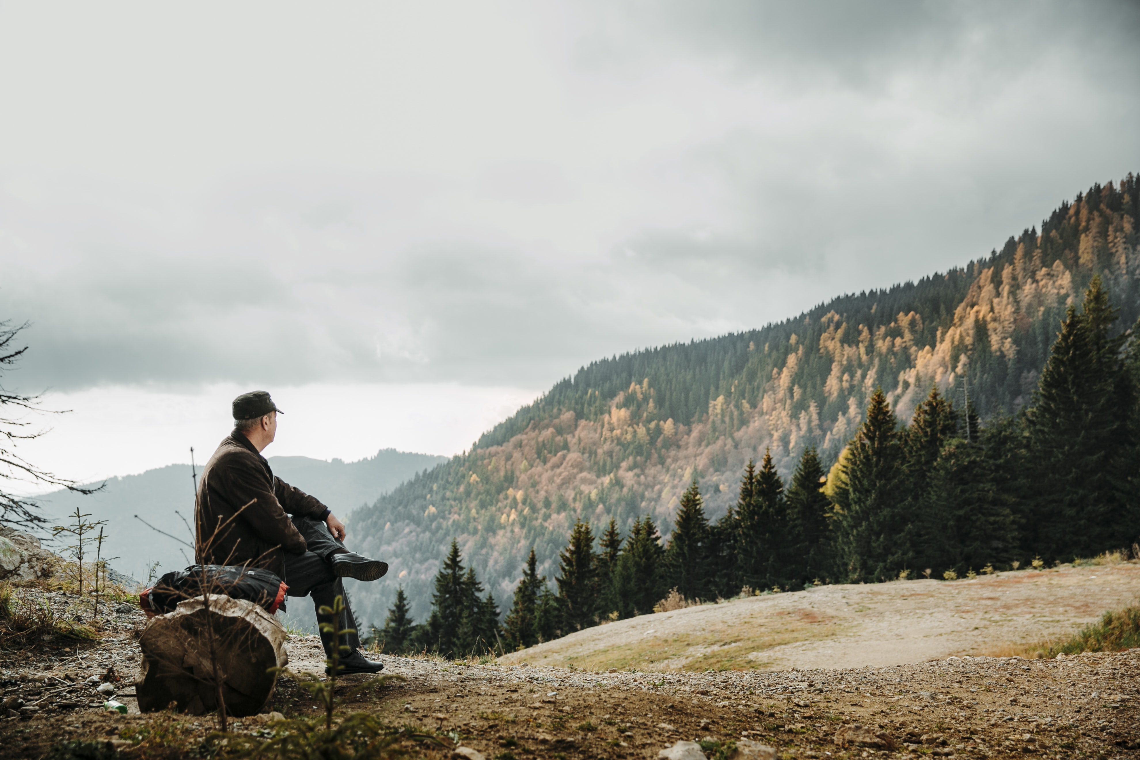 man sitting on rock facing forest