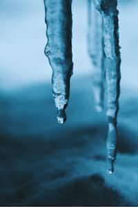 Winters Rage blizzard stories