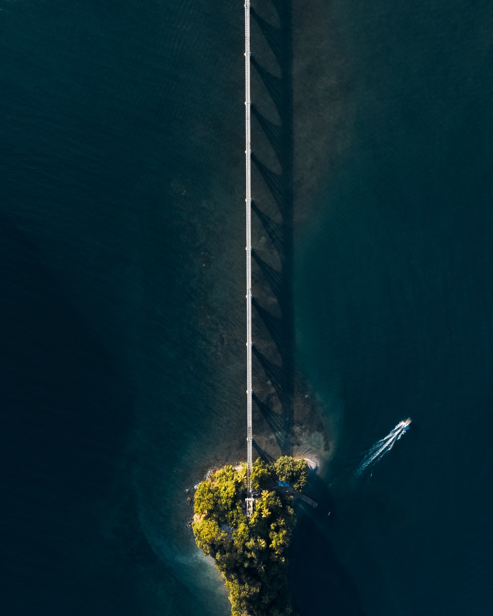 areal photography of trees between body of water