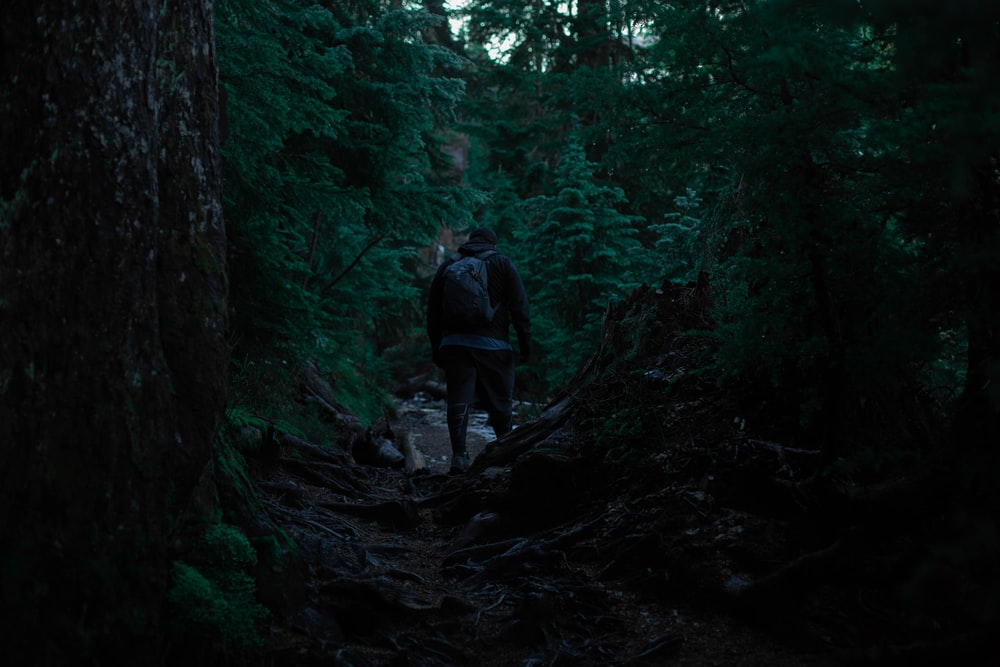 person carrying backpack walking in forest