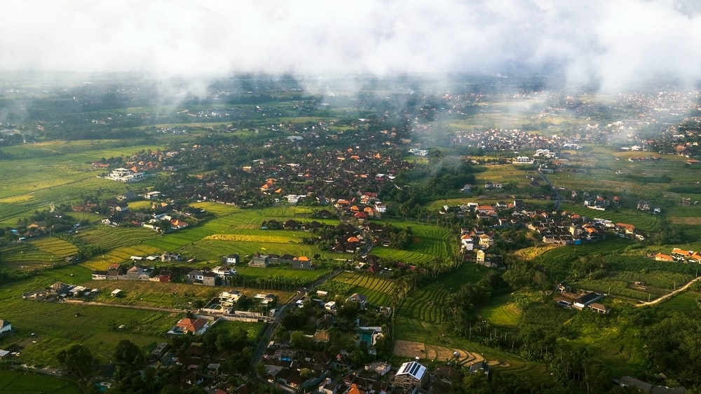 aerial view of trees and houses