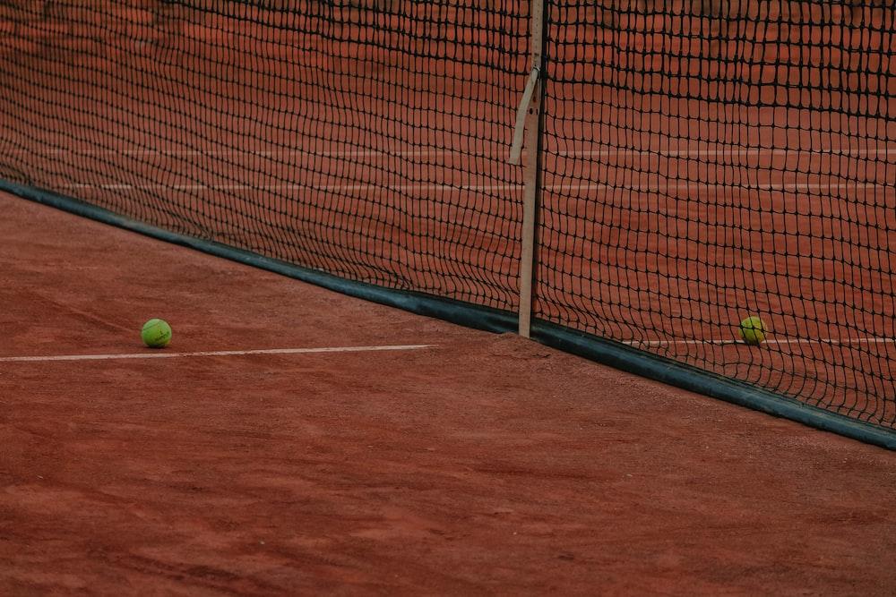 baseball in net goal