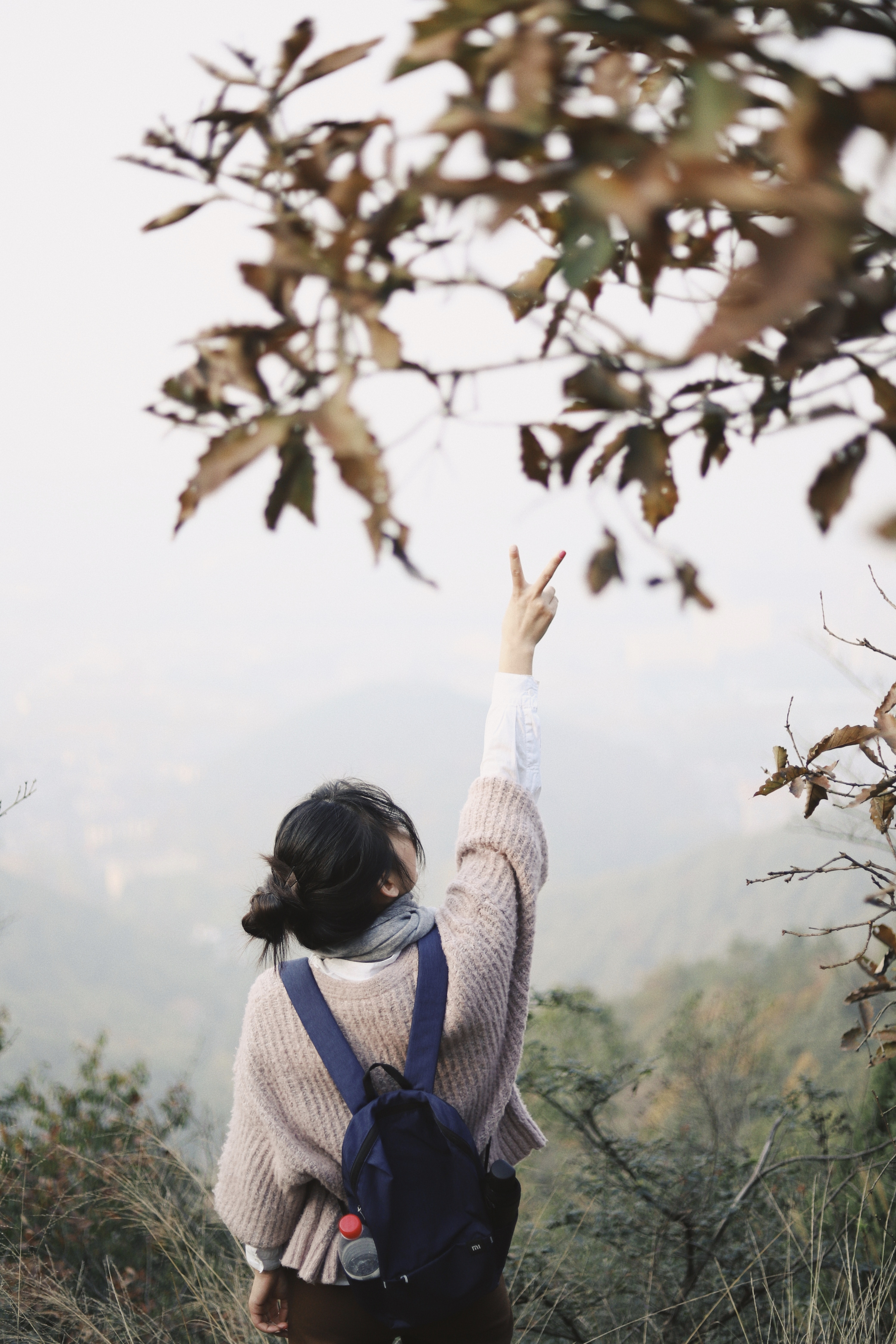 woman raising right hand with peace sign facing mountain