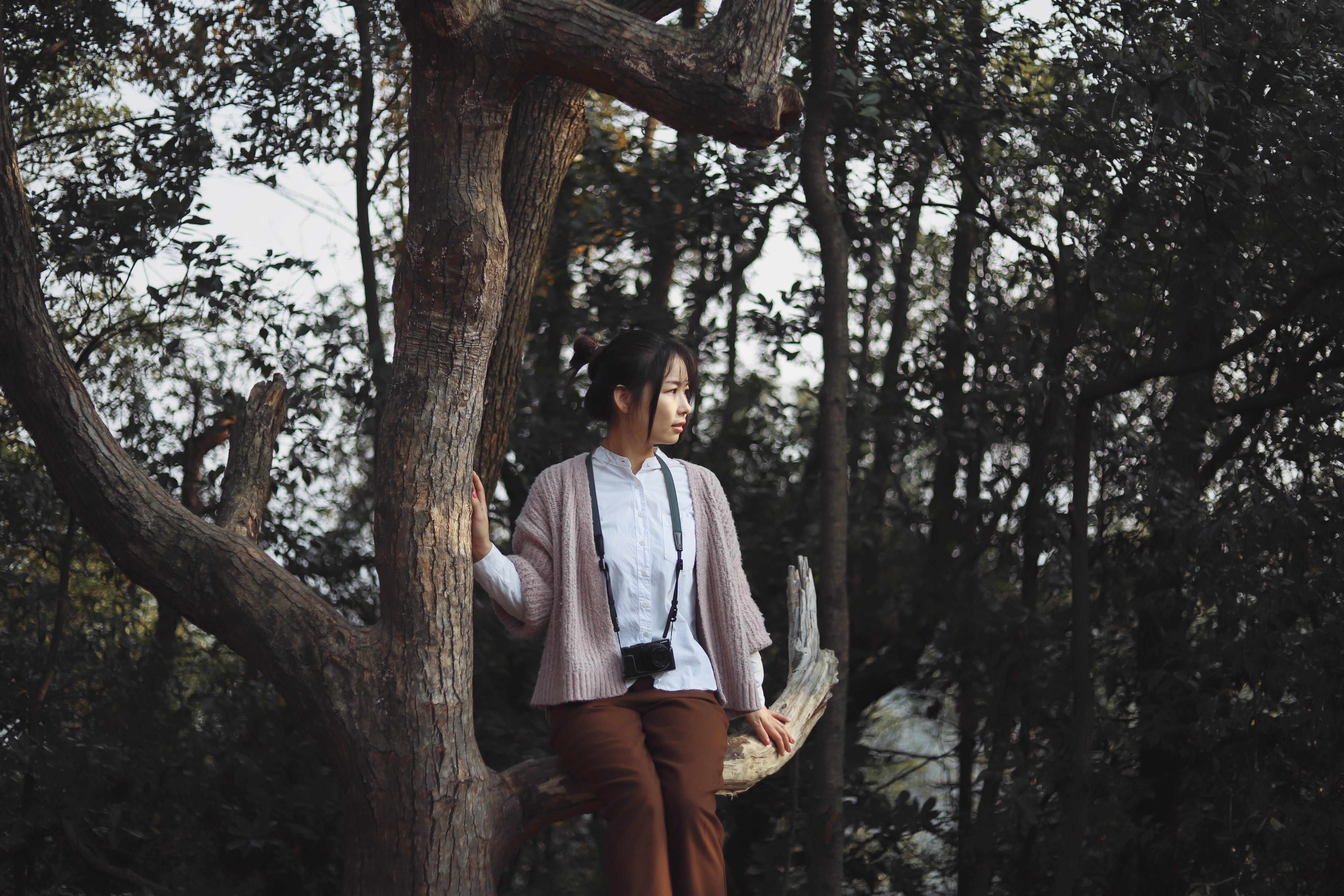 woman sitting on tree