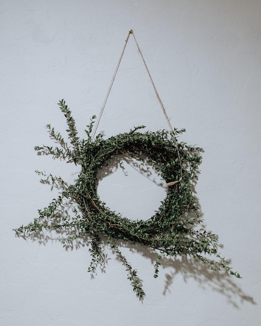 green leafed wreath on wall