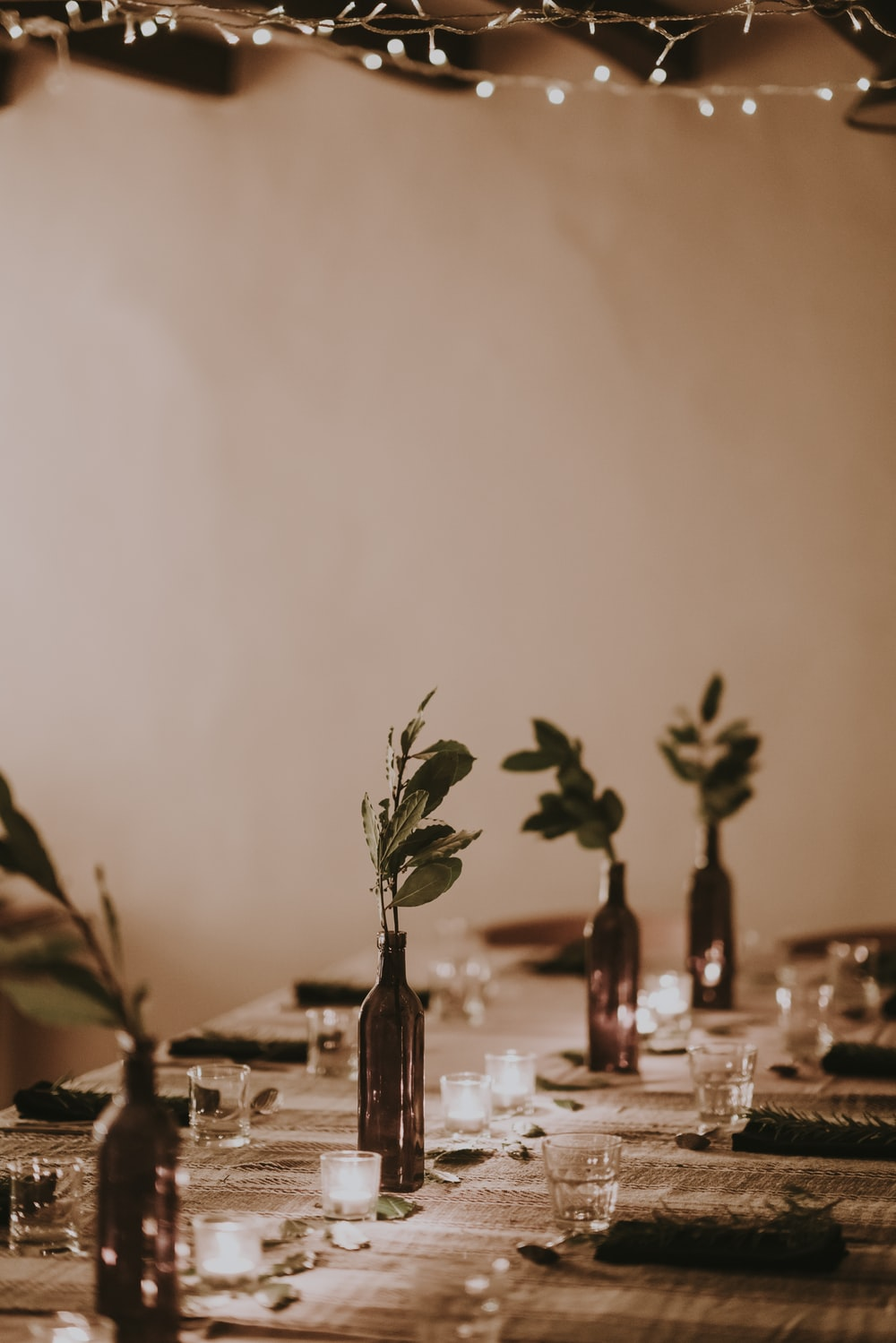 clear drinking glasses and flowers on table near wall