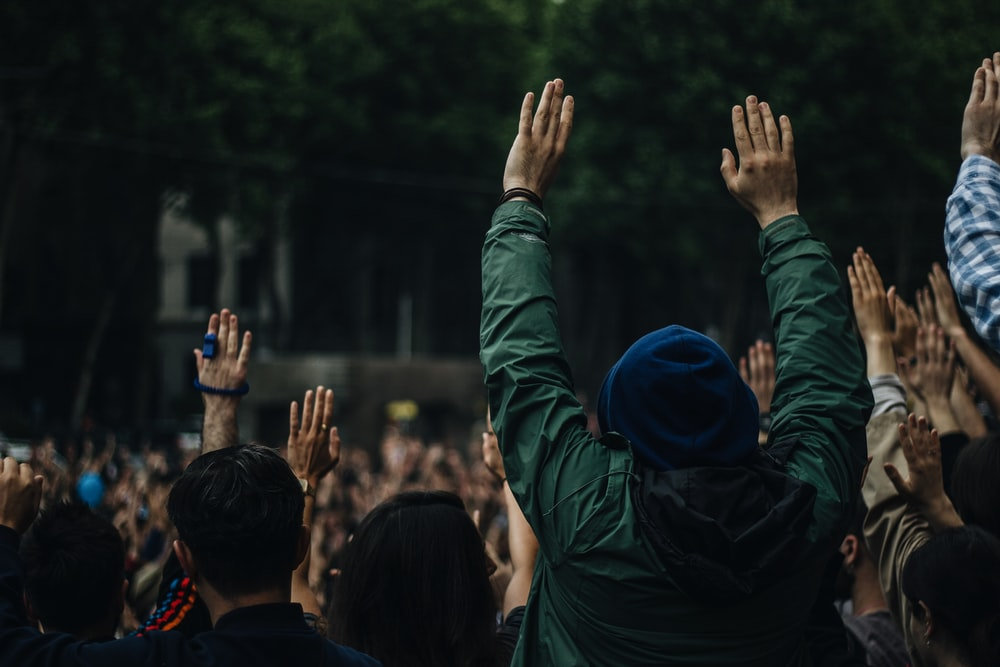 people raising both hands under shade of tree at daytime