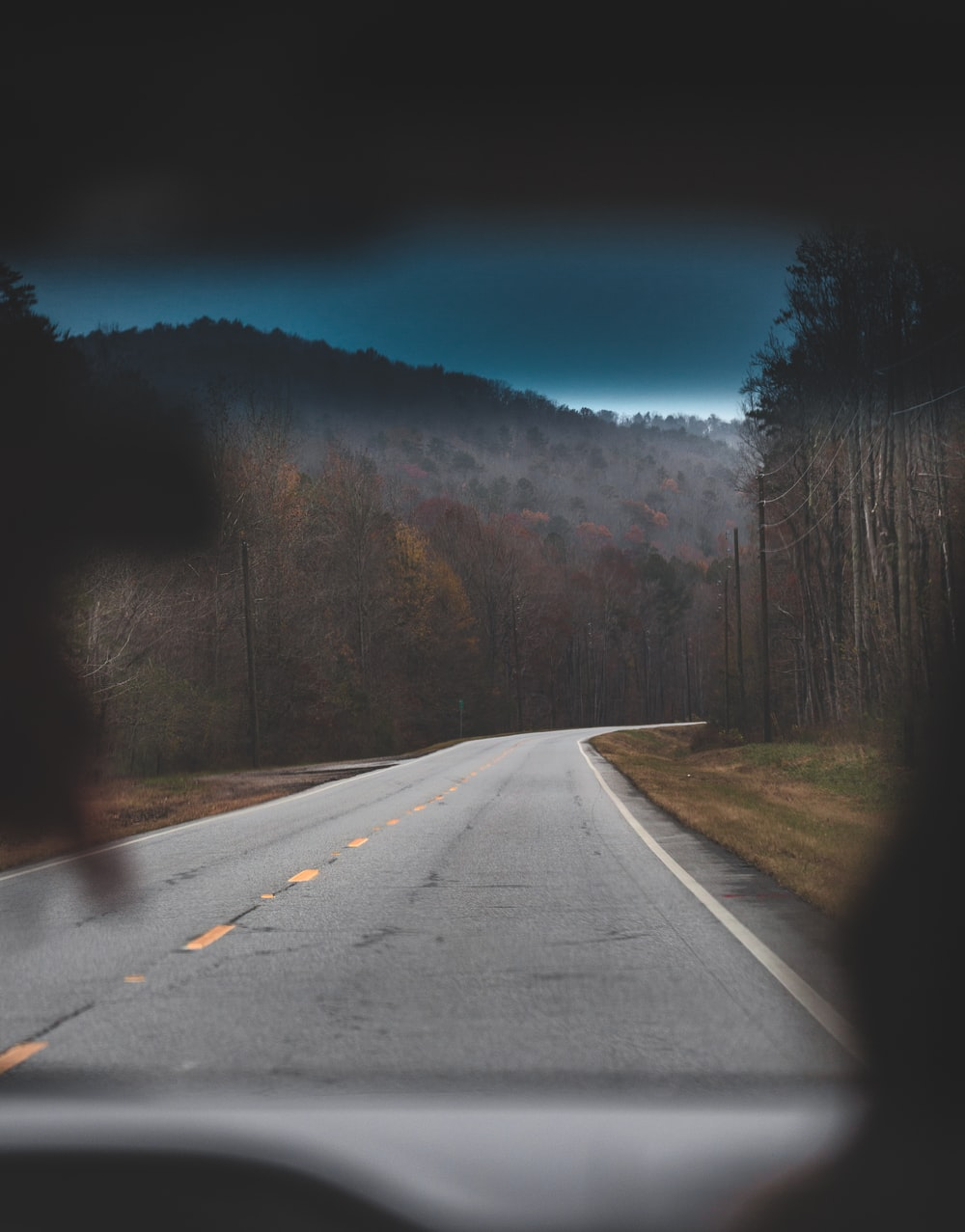 empty gray road near trees
