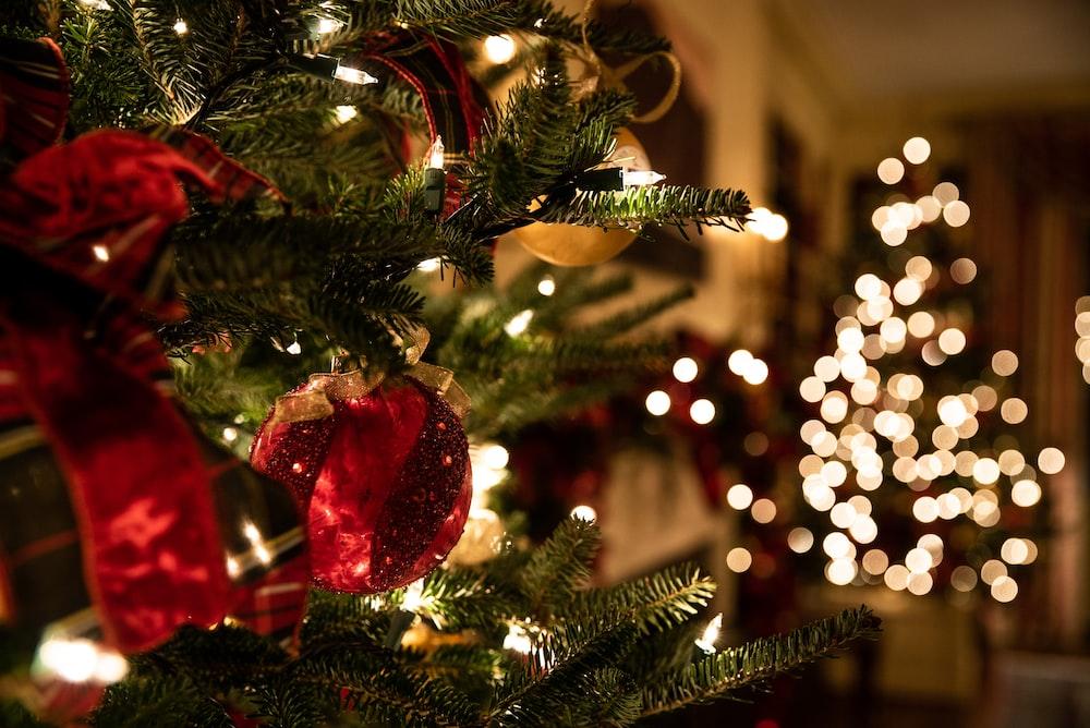 green Christmas tree