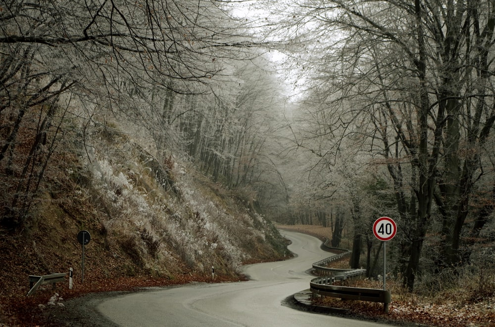 empty zig-zag road with 40 mph speed limit signage on side of hill at daytime