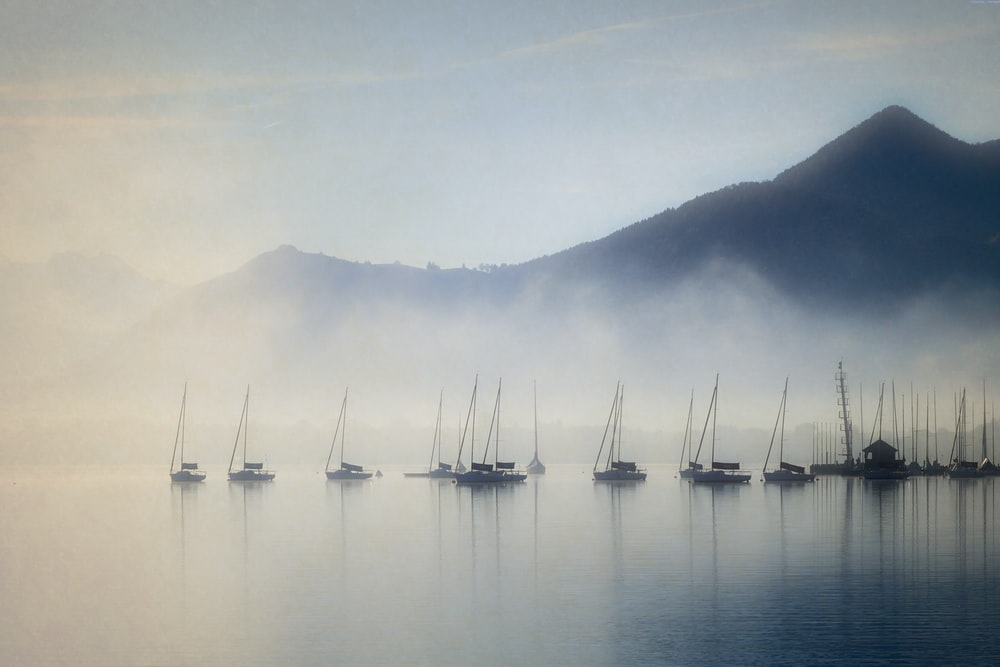 boats on body of water with fogs