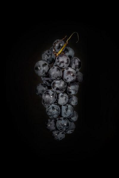4697. Bor,szőlő, borászatok