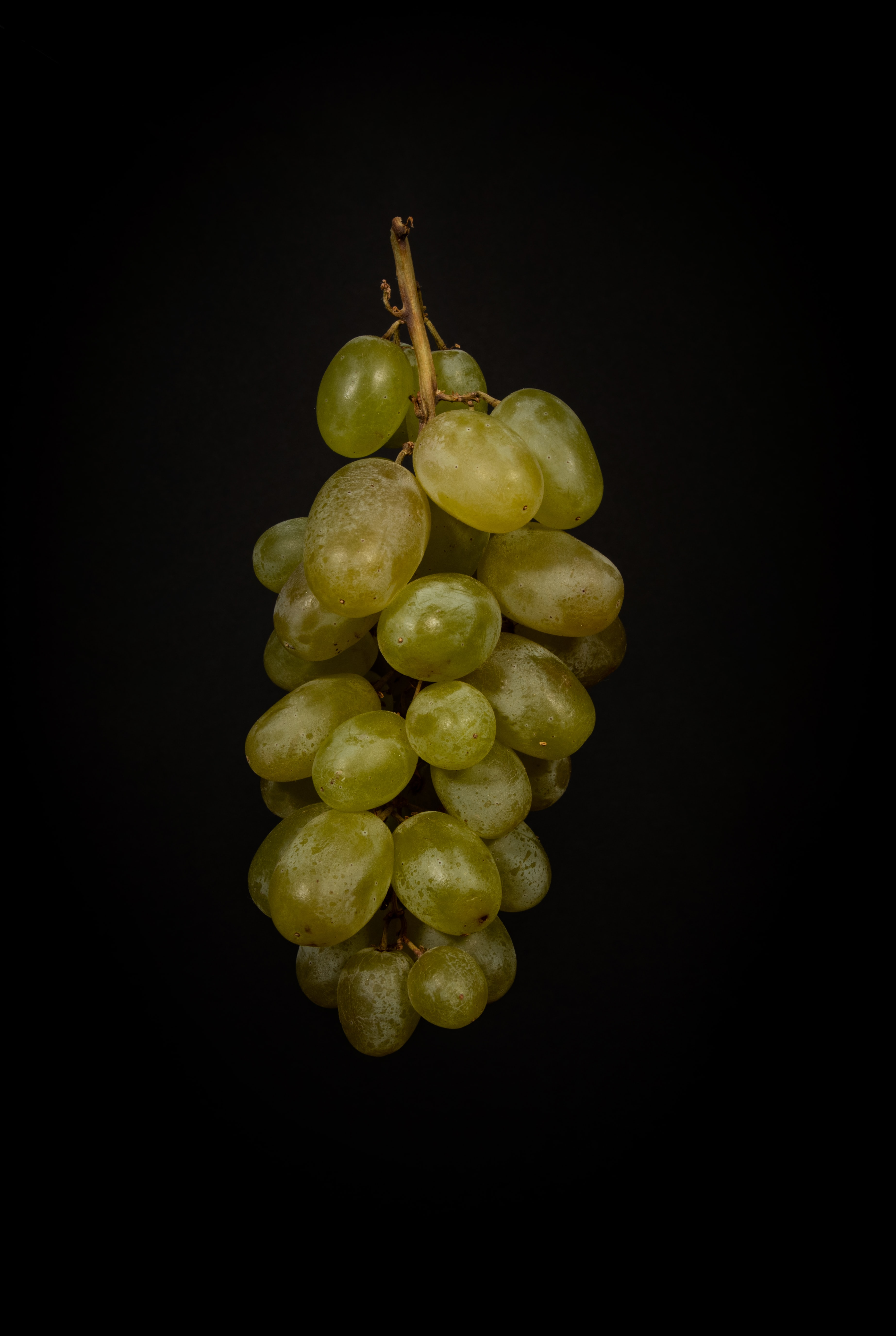 green grape fruits