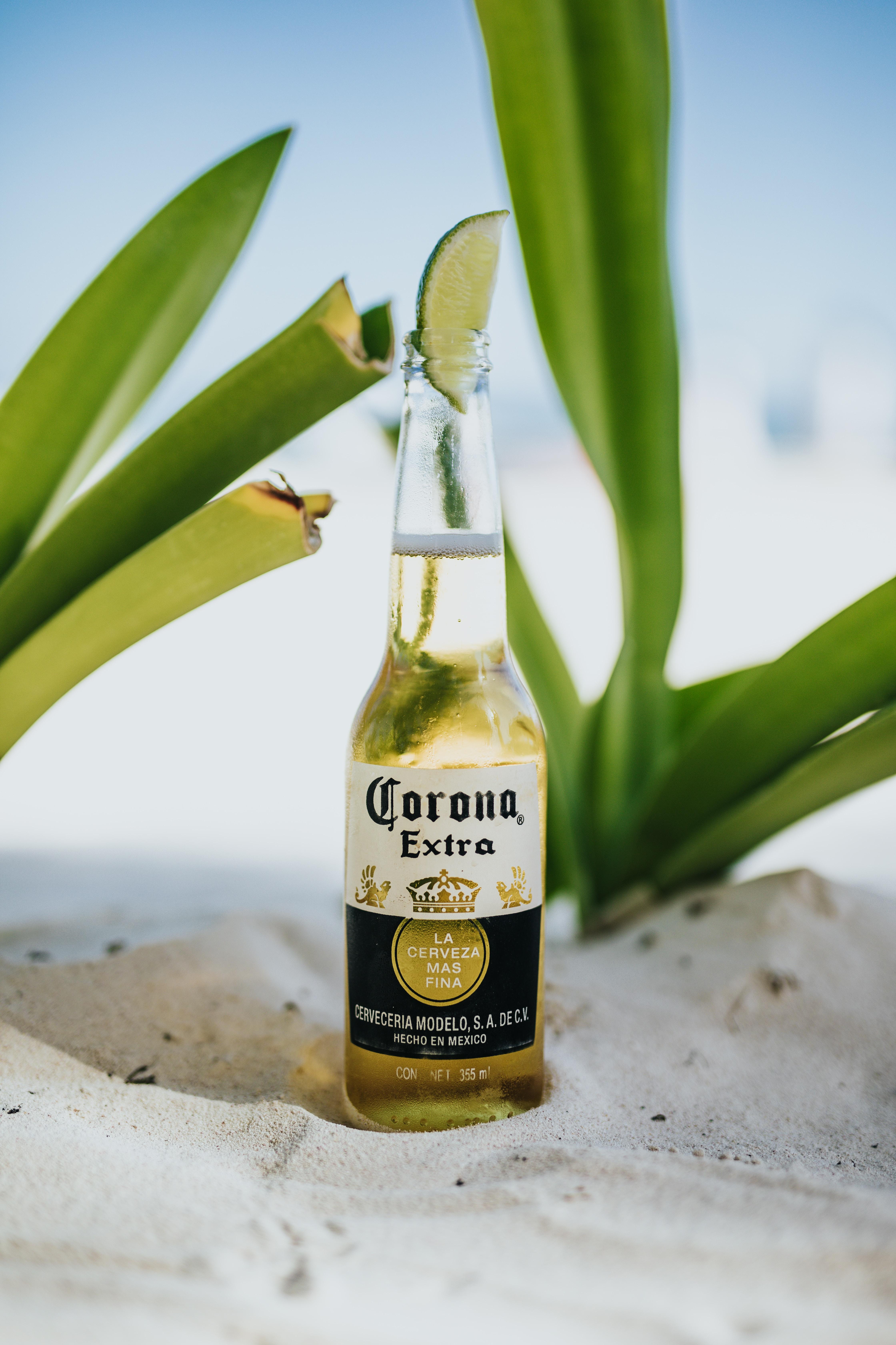 Corona beer top with lime