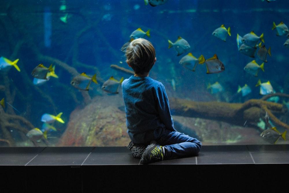 child sitting on aquarium