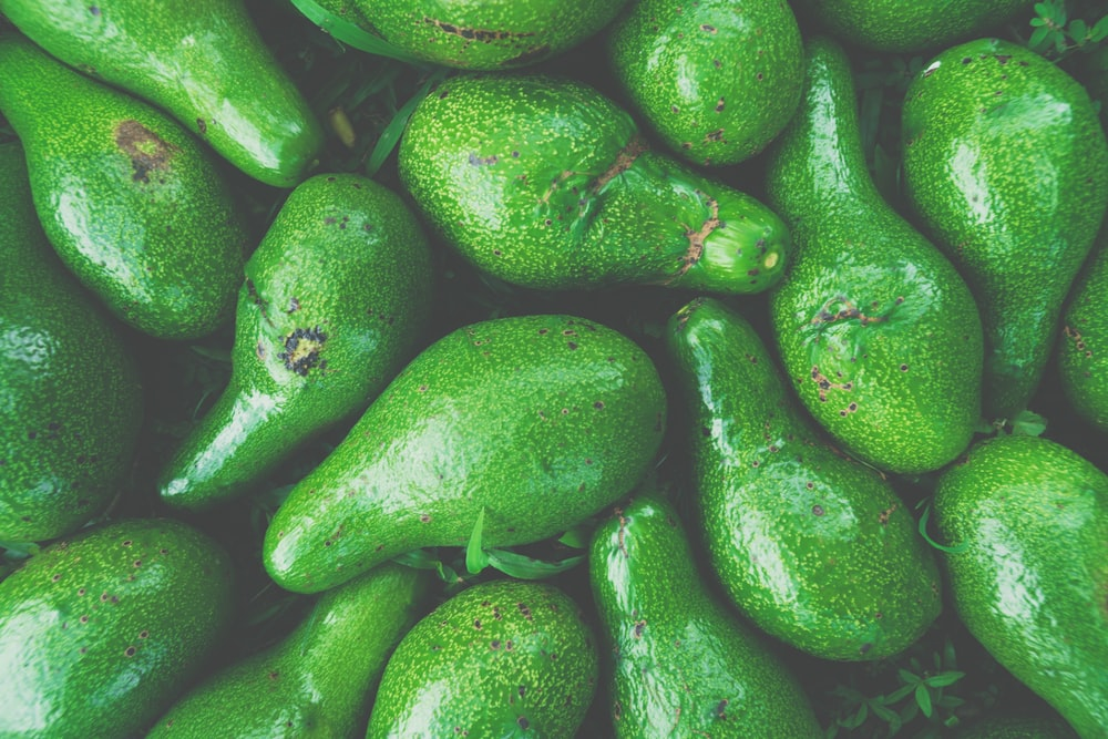 green avocado fruit lot