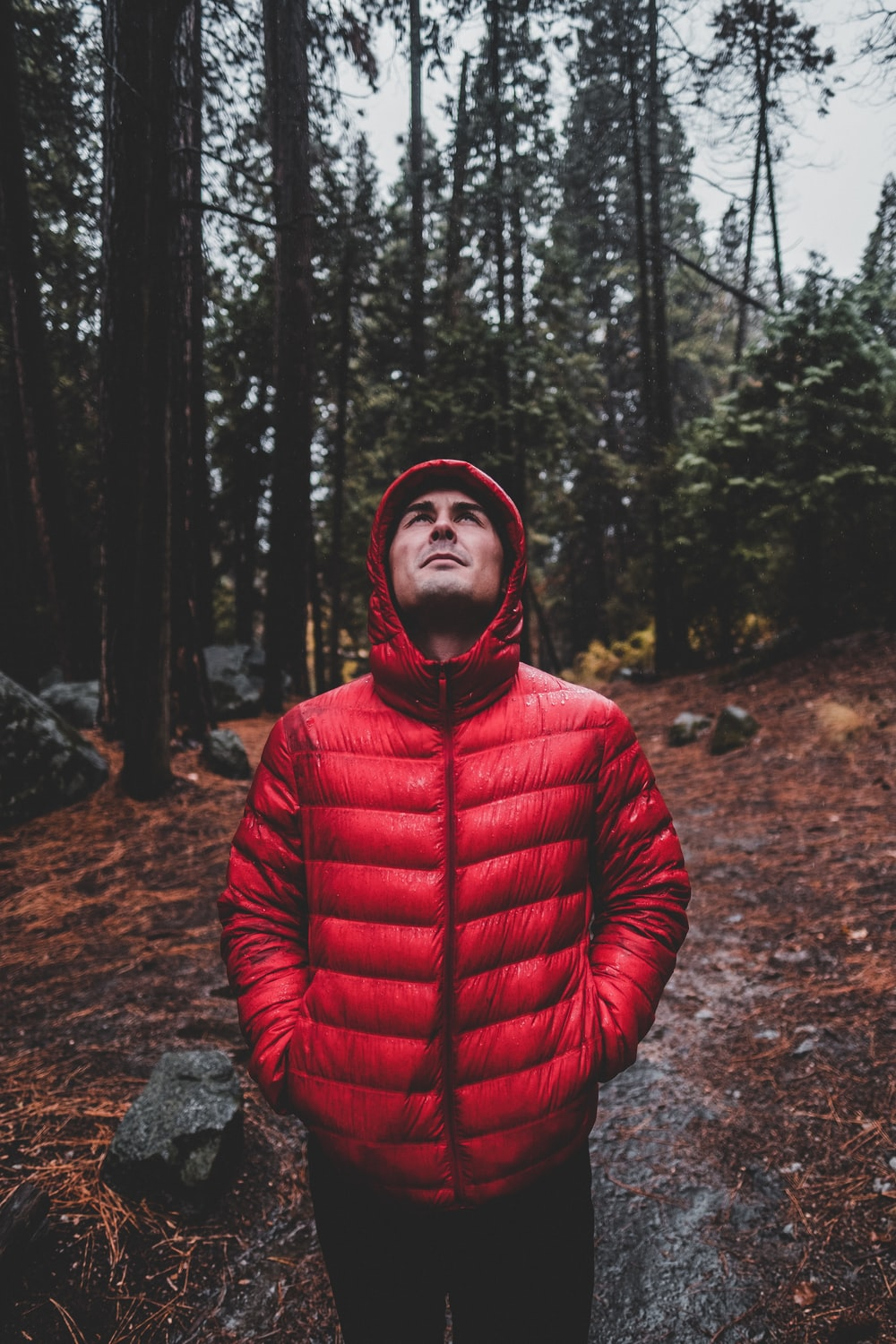 man in bubble jacket walking in forest during daytime