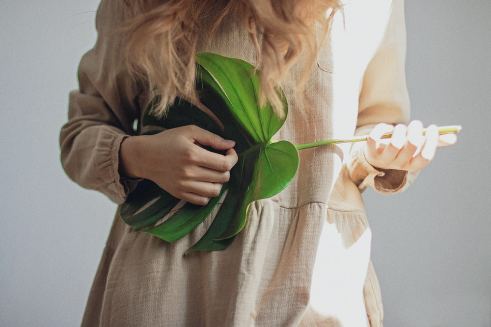 person holding green-leafed plant