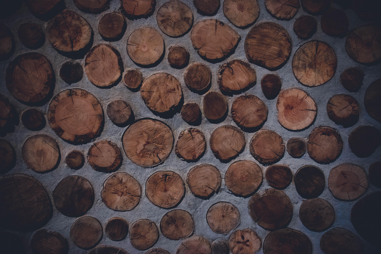 cork wood decors