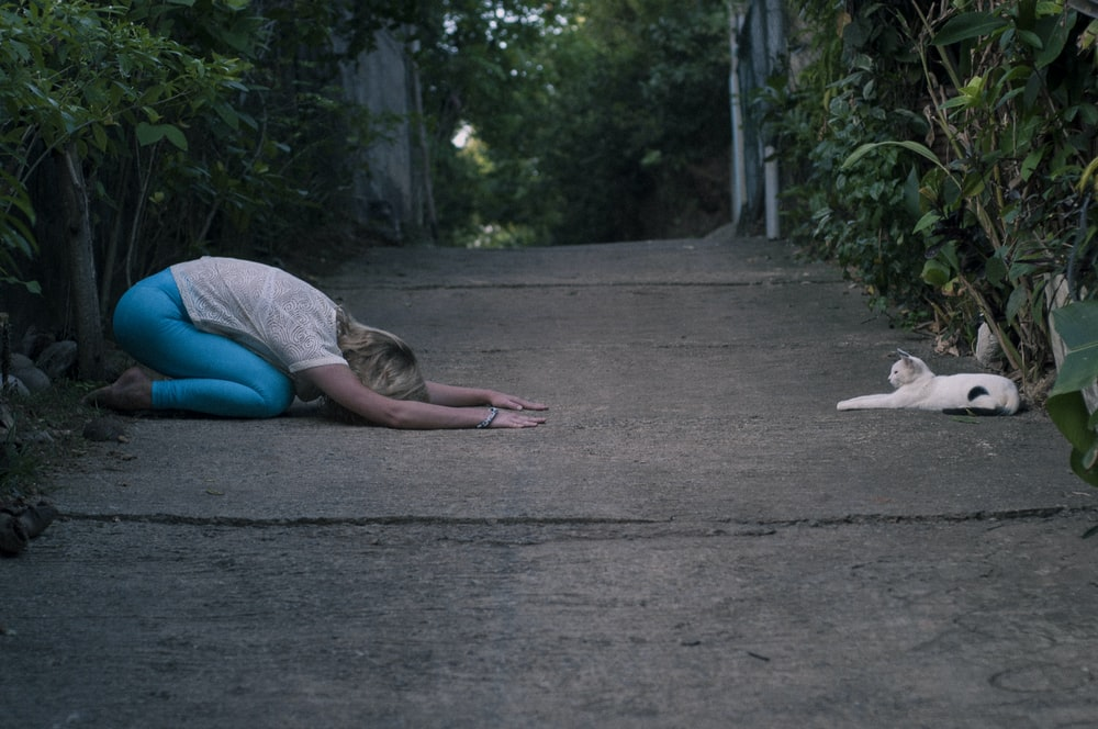 woman kneeling in front of cat lying on ground