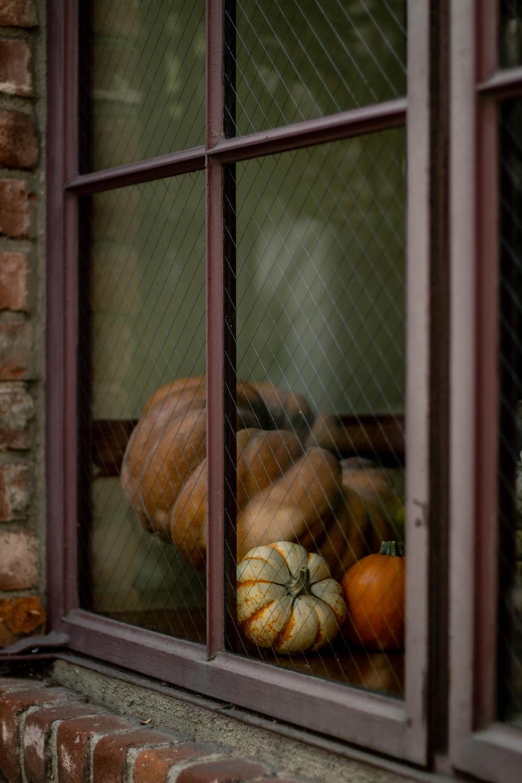 squashes beside window