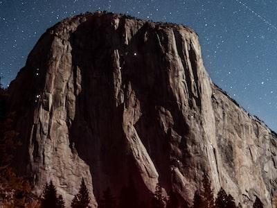 Nel parco Yosemite deserto, è una pacchia per gli animali
