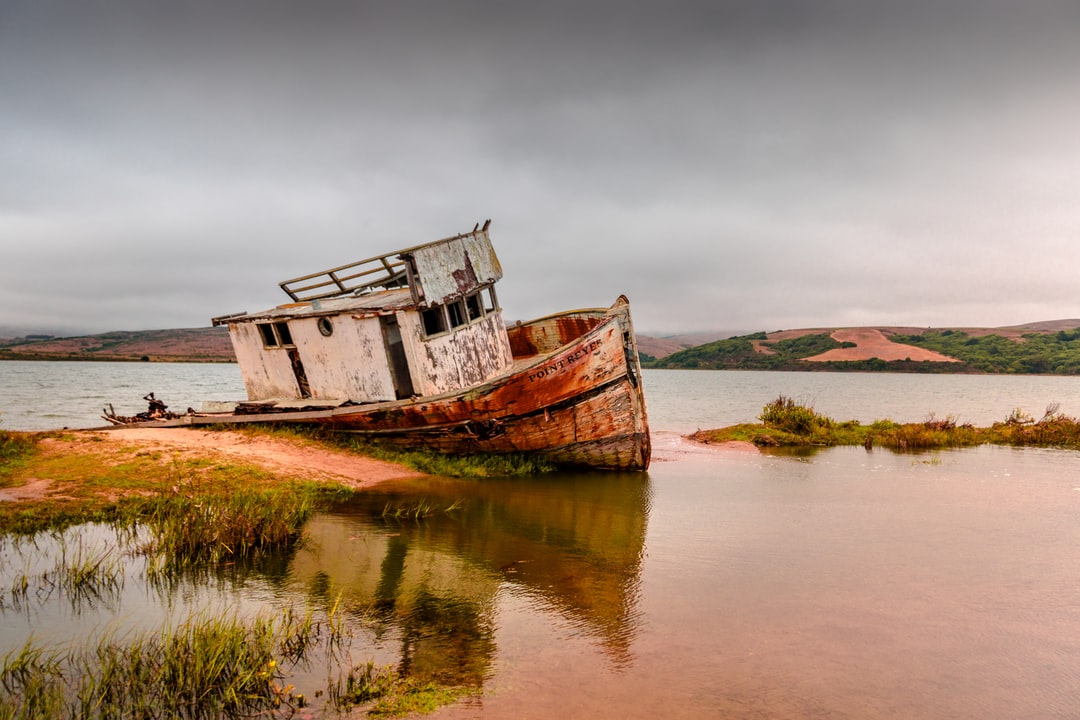 A shipwreck always makes a good backdrop on a gloomy day.
