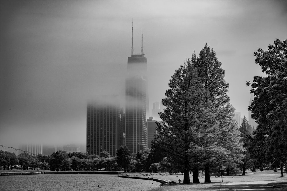 building covered in fog