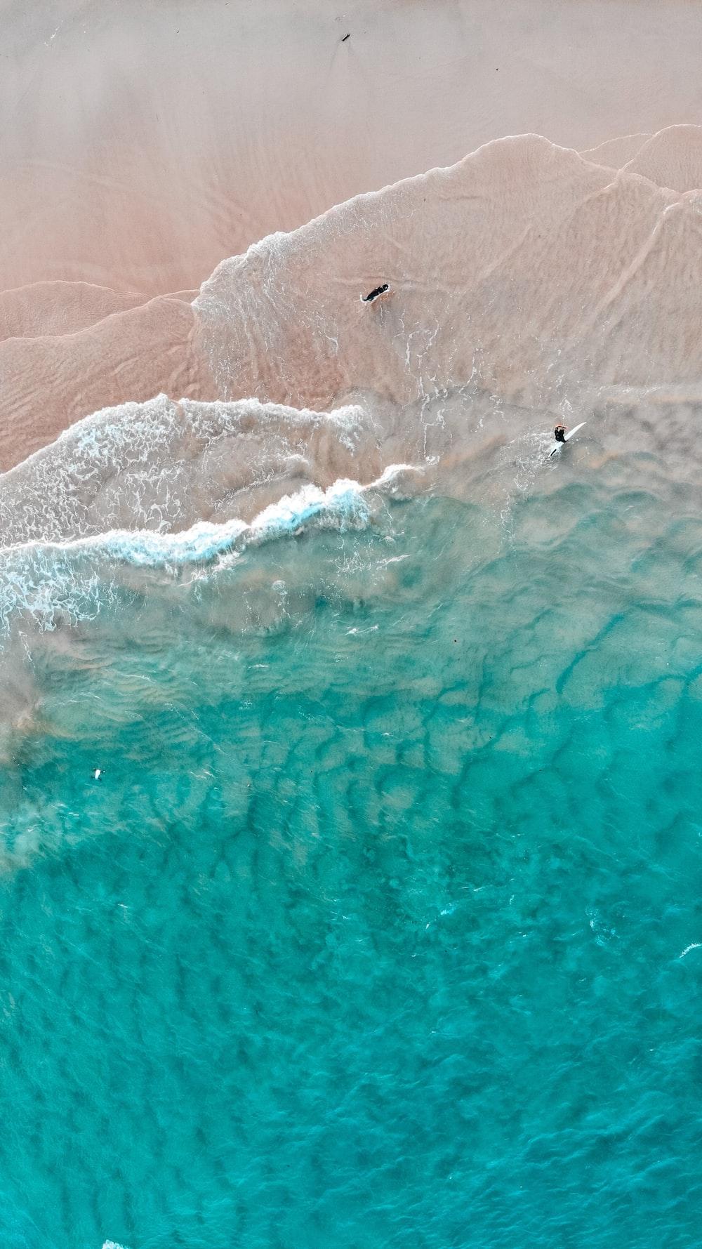 bird's eye view of sea shore