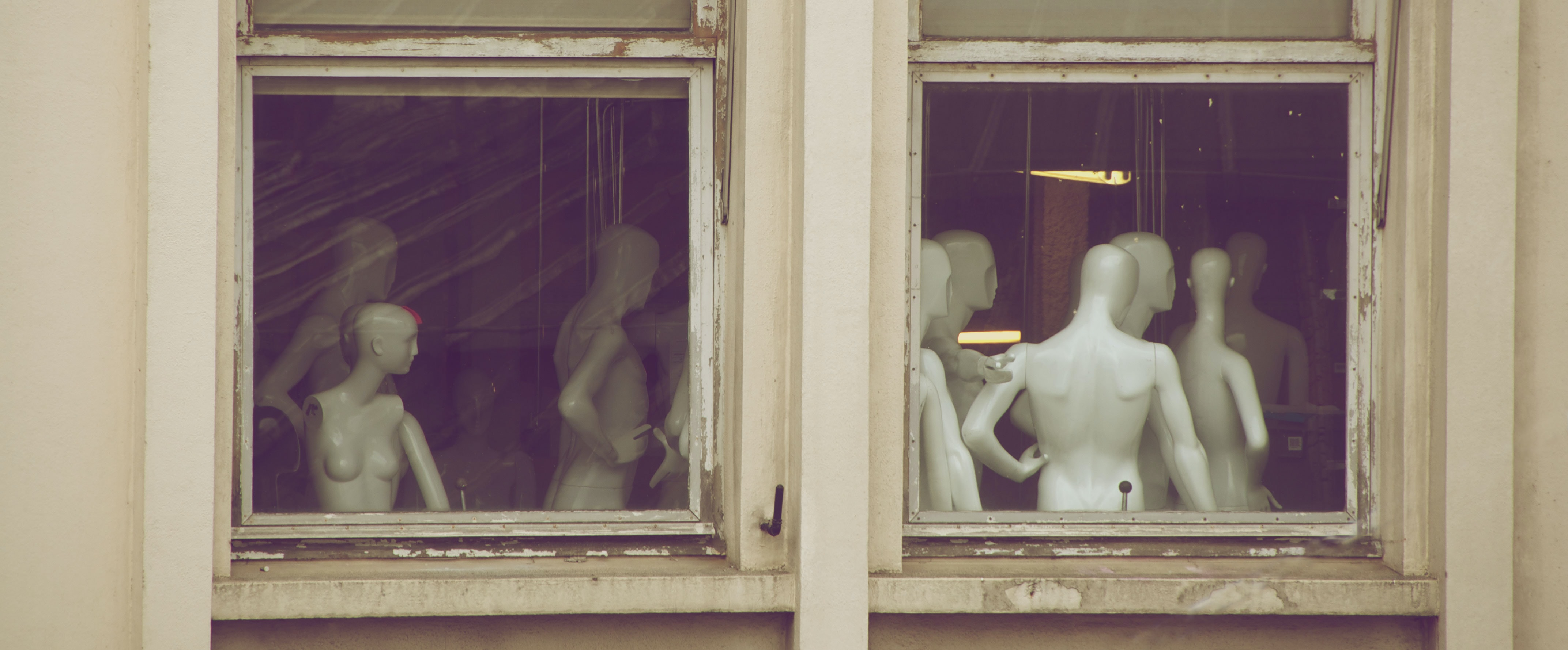 white torso mannequin near window