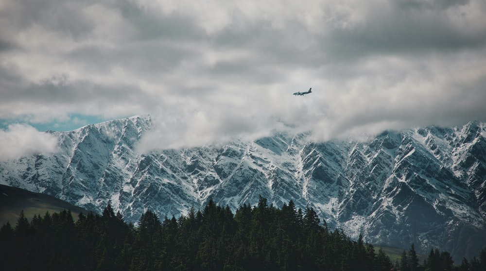 plane flying above forest