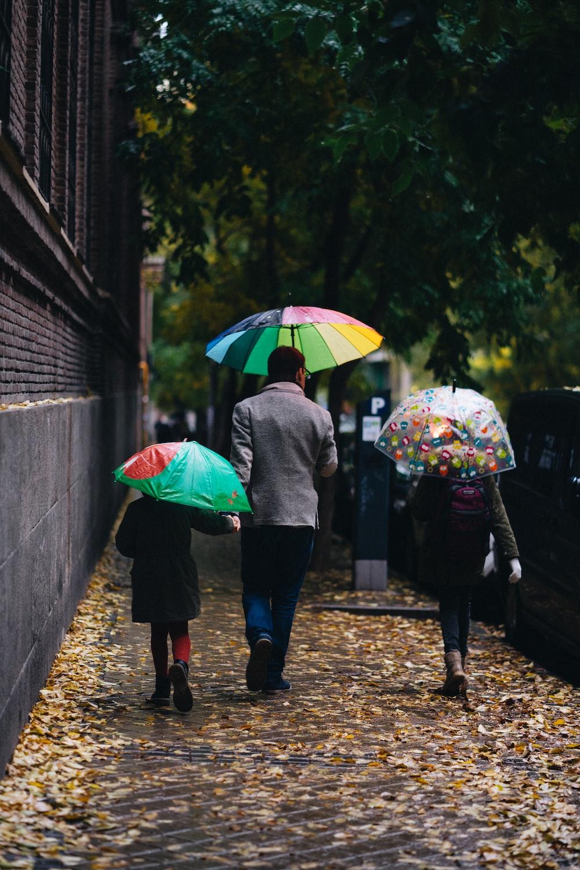 three person walking with umbrella near green tree