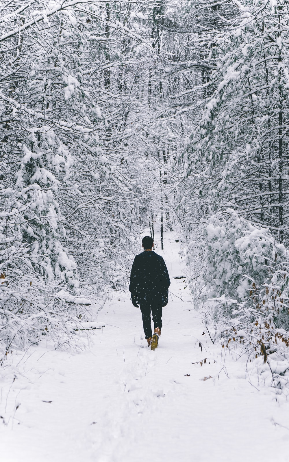 man walking on snow covered field surrounded by trees