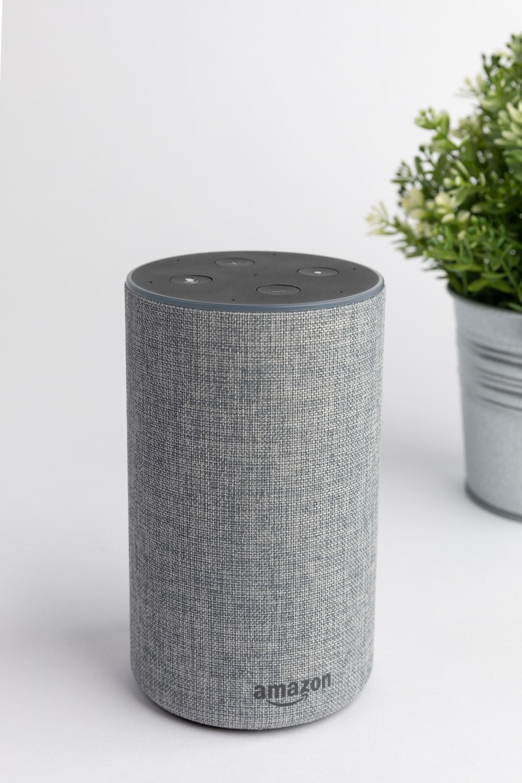 gray Amazon Echo portable speaker