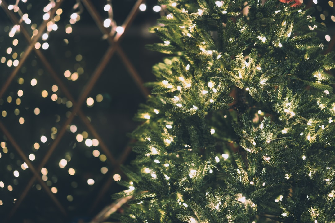 Best 500+ Christmas Lights Pictures HD 2019   Download Free Images on Unsplash