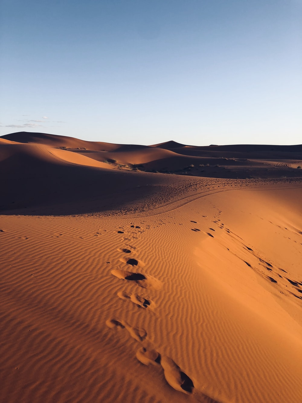 footsteps in sand of desert