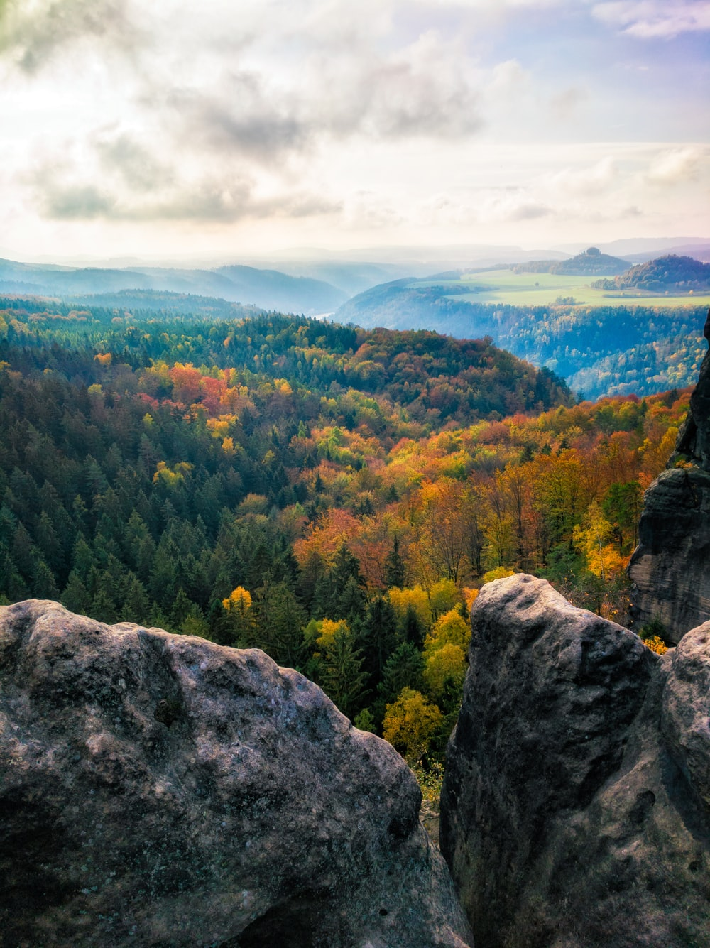 gray rocks and trees