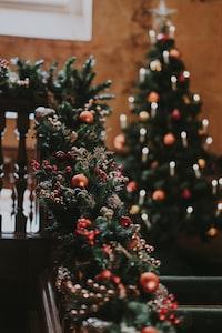 Christmas tree and festive garland