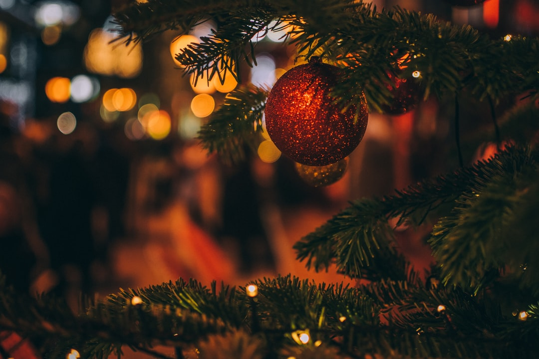 500 Merry Christmas Pictures Hd Download Free Images On